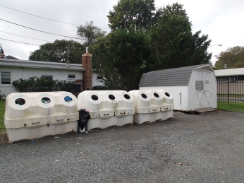 Recyclable Drop Off Site