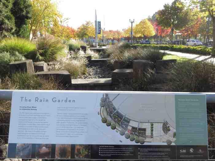 rain garden_pdx_low